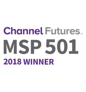msp501-winner279x300